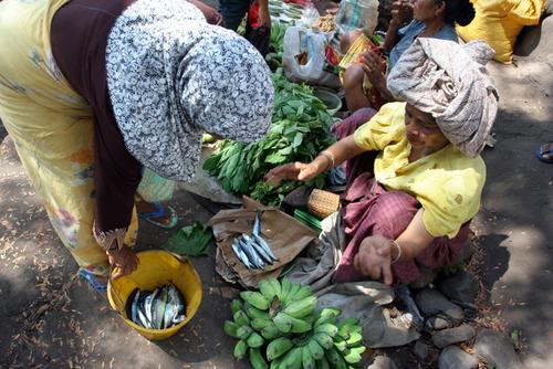 Mama Mama Lamalera sedang Barter Ikan dengan Pisang